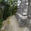At the top of Templo IV