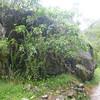 Big rock.