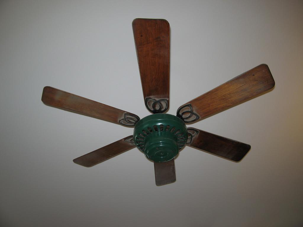39 Fan Detail