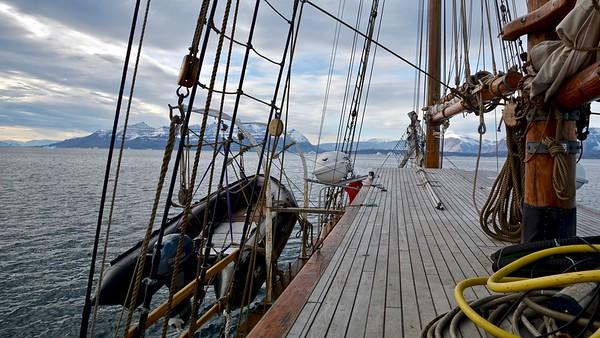 Sailing - Donna Wood