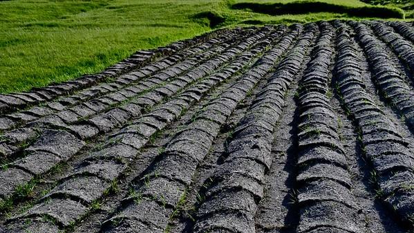 Funningur - Eysturoy - (Potato field) (Aardappelveld)