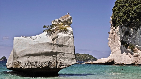 Cathedral Cove - HAHEI
