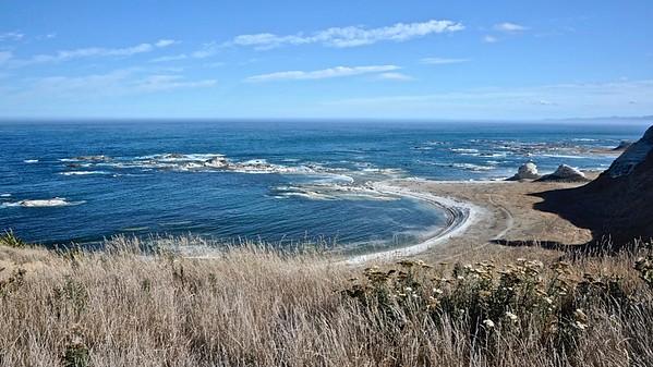Peninsula Seal Colony