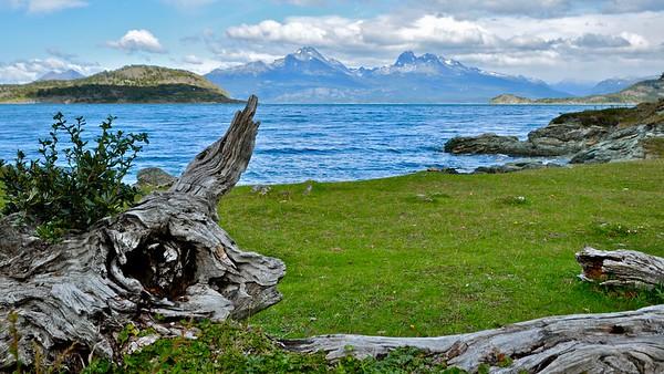 Bahia Ensenada - Tierra del Fuego NP