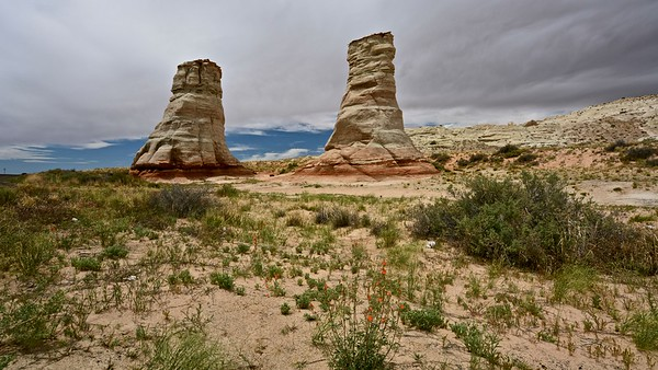 Elephant's Feet - Arizona