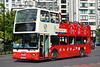 DLP206-2012 06 13-1