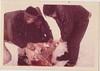 T3 June 1971 Polar Bear Bill Grothe (2)