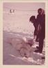 T3 June 1971 Polar Bear Bill Grothe (1)