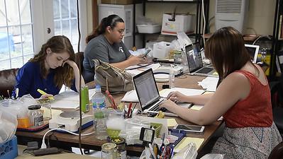 Archeology Students 9