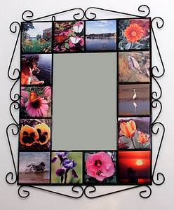 WI Mirror Beach Dogs & Flowers