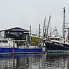 BOATS TIED OFF IN THE HARBOR AT TARPON SPRINGS FLORIDA.