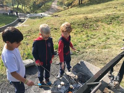 TASIS First Grade Field Trip