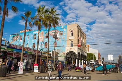 Venice Beach Stouts N Staches. www.stoutsnstaches.com @StoutsnStaches  #stoutsnstaches  #movember.  Photo by www.VenicePaparazzi.com