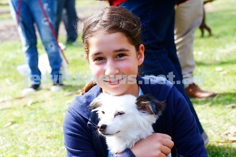 26-11-16. Temple Beth Israel. 2016 Bark Mitzvahs at Alma Park. Photo: Peter Haskin