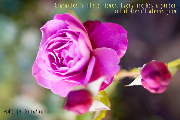 Character is like a flower