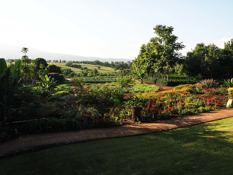 Evening at the Farm Valley Lodge