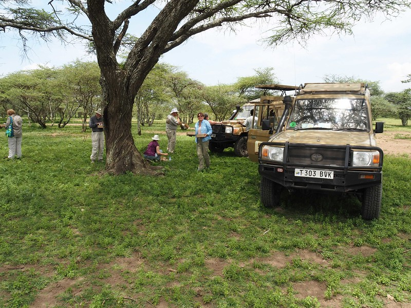 Off road picnic lunch on the Serengeti