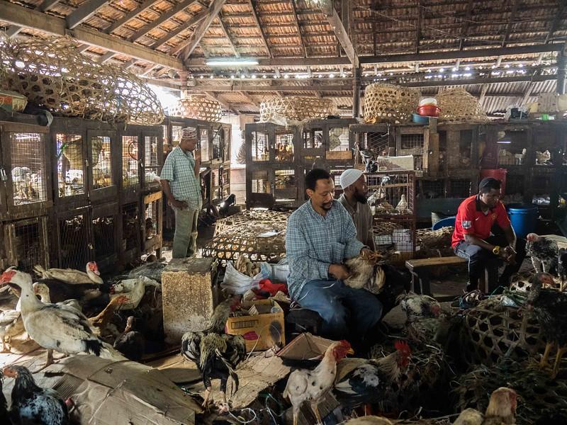 The Chicken Market, Stone Town