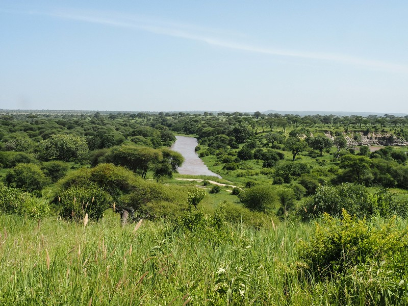 View of Tanangire National Park