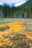 Ochre Paint Pots, Kootenay National Park