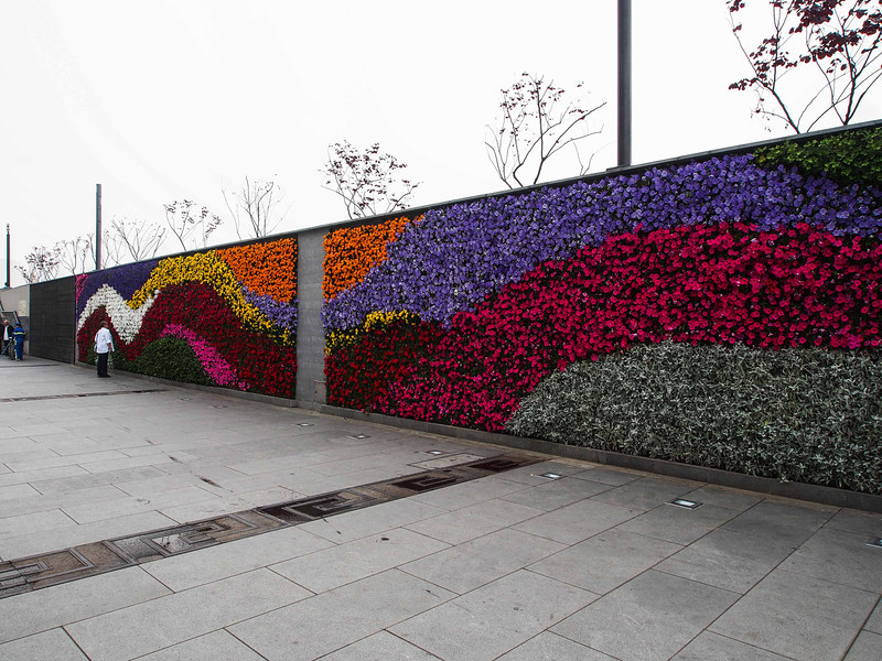 Wall of flowers on the Bund - Shanghai