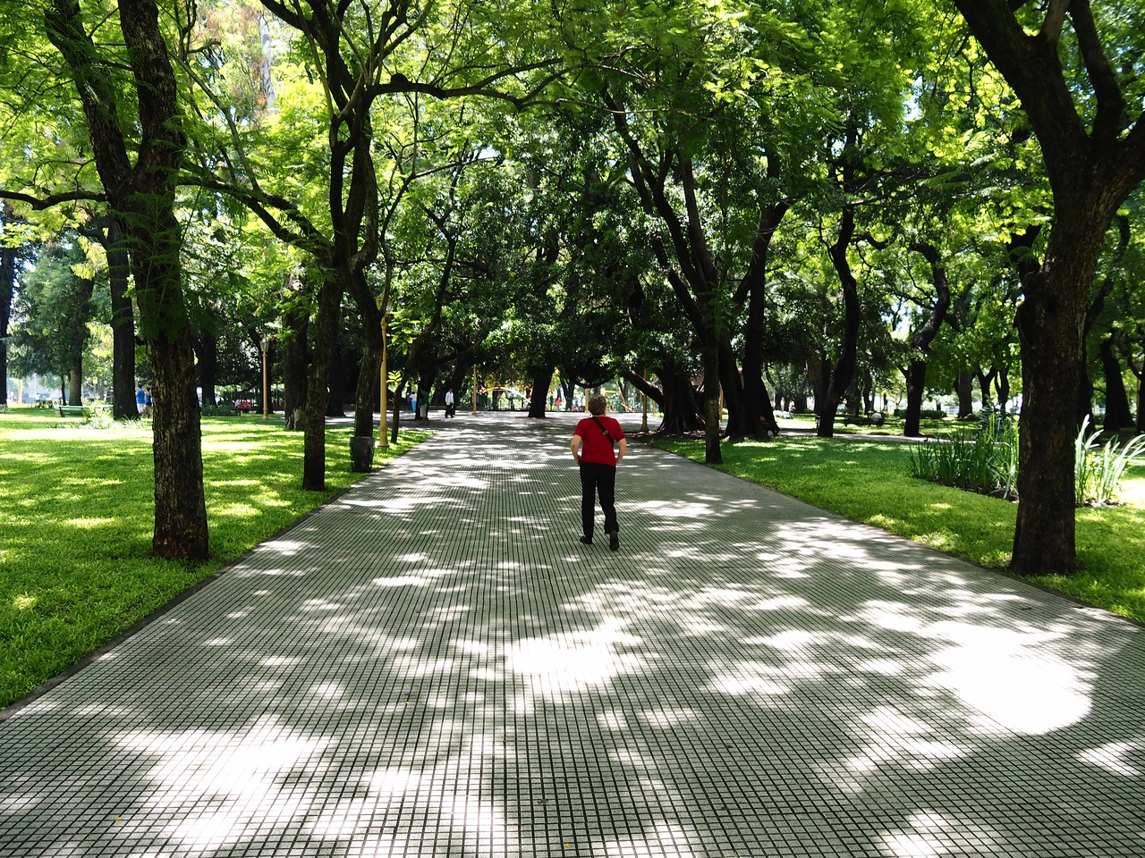 Walking in Parque San Martin