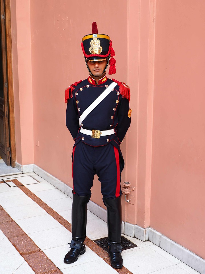 Ceremonial Presidential Guard