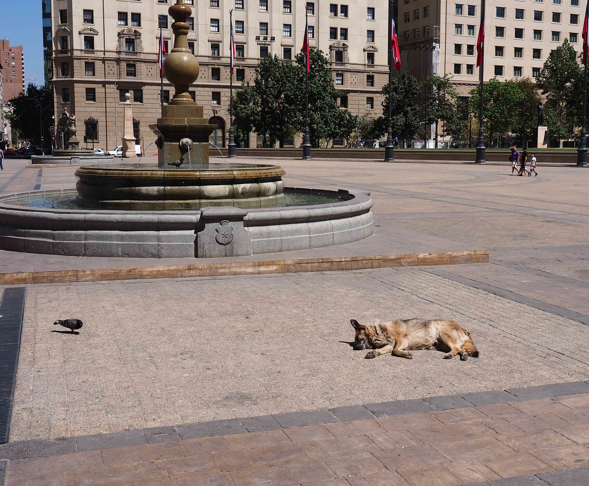 A very quiet morning in the main plaza of Santiago