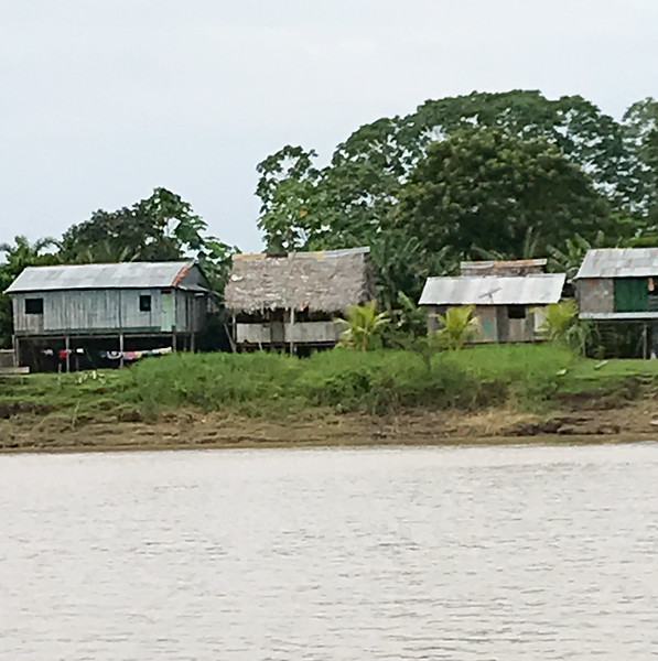 Houses Along the Amazon
