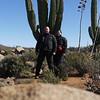 Some fantastic desert cacti area on the Baja.