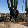 Some amazing cactus scenery on the Baja.