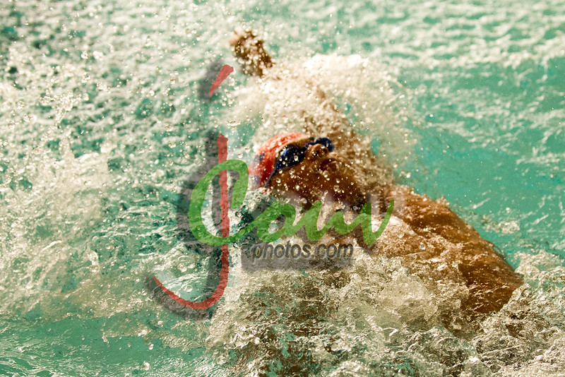 16TCH Swimming1029