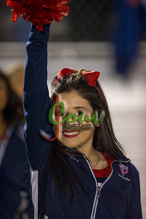 17 Fans @ Loyola game11013