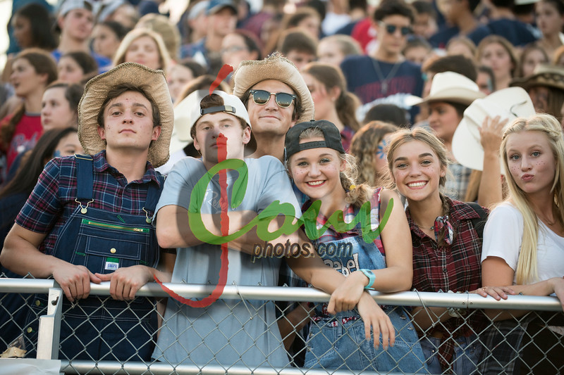 17TC Fans @ ND game4014