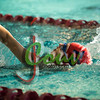 17TC Swim meet1006