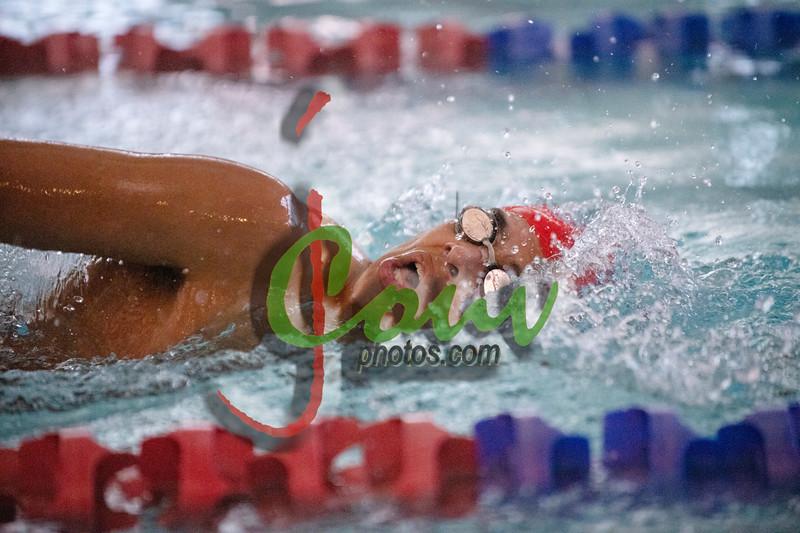 18TC Swim meet1014