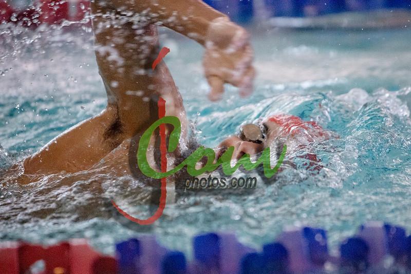 18TC Swim meet1016