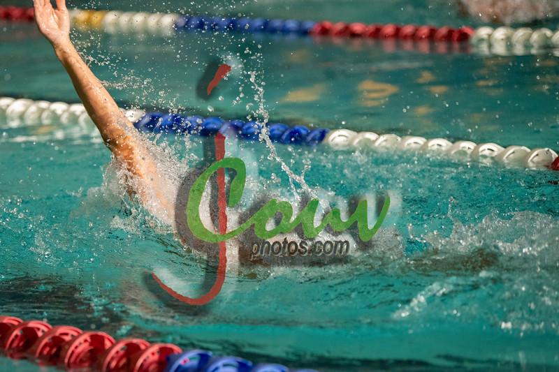 19 TCSwim1006