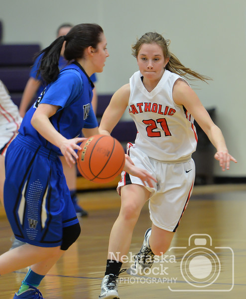 Photo by Aaron Beckman  <br /> <br /> Norfolk Catholic's Bailey Barnes attempts to go after the ball against Wayne's Rachel Rauner Wednesday during the Girls Mid-State Conference in Battle Creek.