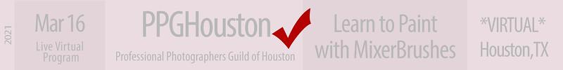 21-03-16 PPGH Paint Houston X