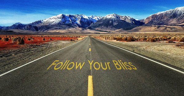 Follow your Bliss LEAN