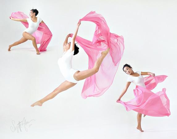 Pink Silk Soar 2