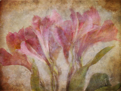 Antique Flowers painted