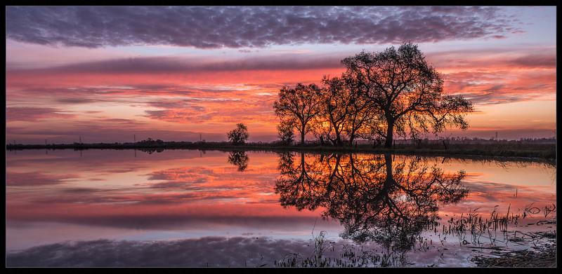 CAyuba-Sunset Sensation