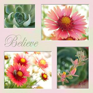 FLOWER 24x24 believe