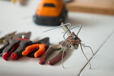 TEDx-Bug-Building-0935