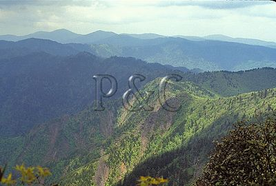TENNESSEE - GREAT SMOKY MOUNTAINS NP