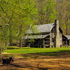 TN DOVER LAND BETWEEN THE LAKES NRA HOMEPLACE DOUBLE PEN HOUSE APRAF_4150883MMW