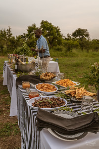 Thornybush22pm_5678