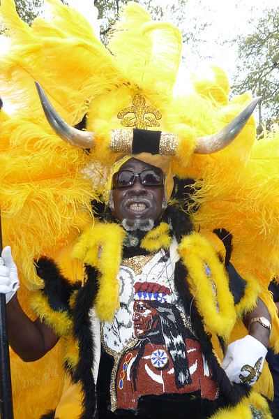 Images from folder 2017 Mardi Gras Indians